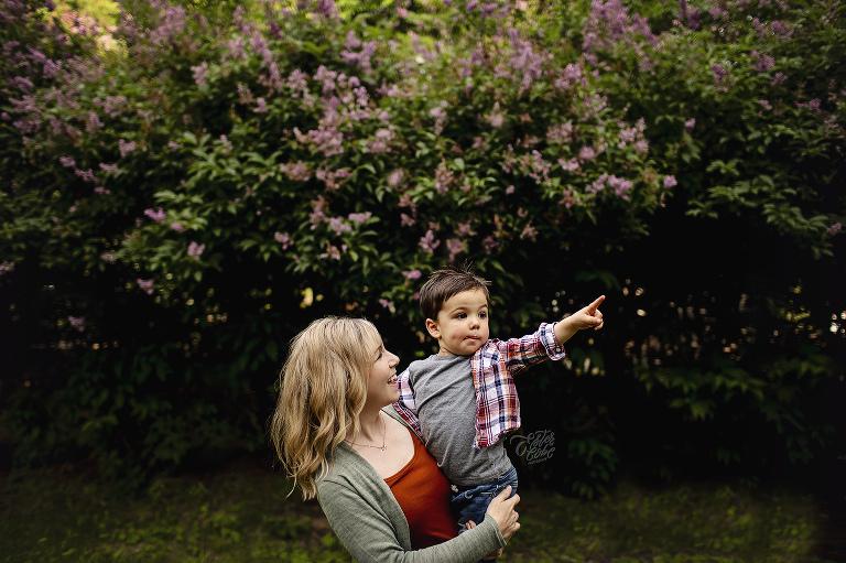 June Mini, Lilac Mini Session, Michigan Professional Photographer, Ann Arbor and Metro Detroit